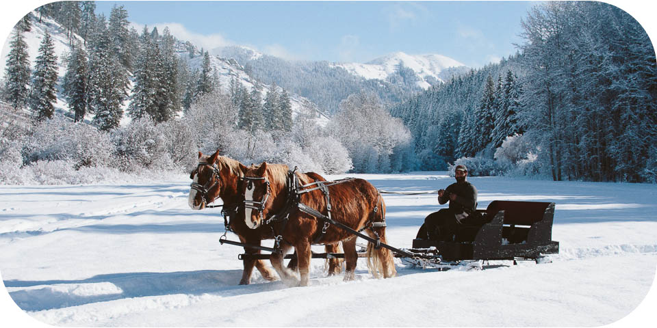 Private Sleigh Ride